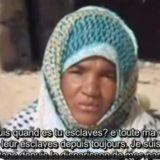 Habi Rabah